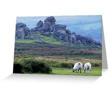 Dartmoor sheep Greeting Card
