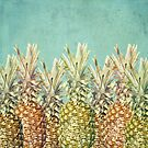 Pineapple Paradise by Lisa Argyropoulos