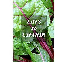Vegetable Geek Humor Swiss Chard Organic Veggies Photographic Print