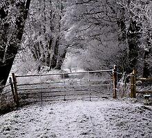 Winter Gate by Karen  Betts