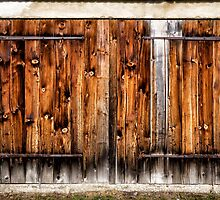 I Just Love Old Doors! by Walter Quirtmair