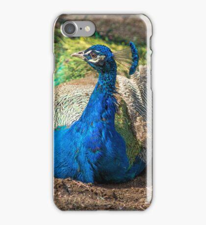 3115 peacock iPhone Case/Skin