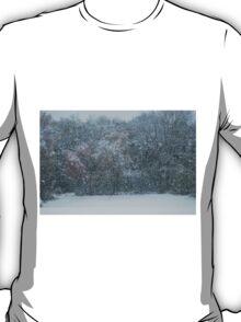 Fall Snowstorm T-Shirt