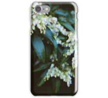 Pieris Japonica iPhone Case/Skin