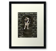 SOMETIME ONE TIRES OF THE OBSTACLES WE GO THROUGH IN LIFE...SAINT BERNARD PUPPY..PICTURE AND OR PRINTS ECT. Framed Print