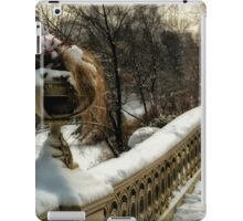 BOW BRIDGE  iPad Case/Skin
