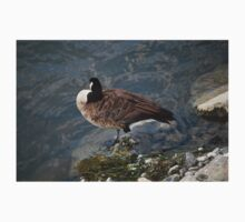 Goose in Water Kids Clothes