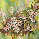 May Blossoms by bevmorgan