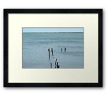 Disa-Pier Framed Print