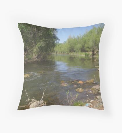 Verde River, Arizona Throw Pillow