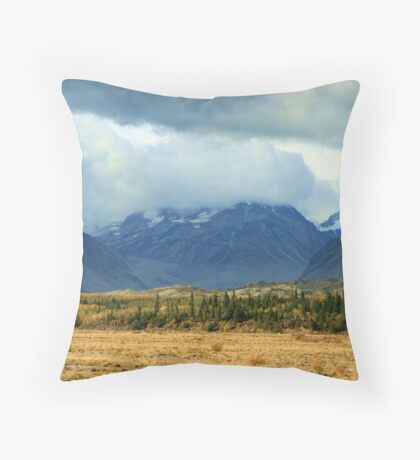 Feeling of Freedom Throw Pillow