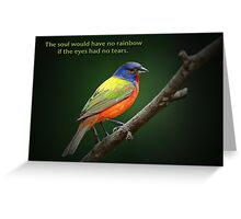 The soul would have no rainbow . . . Greeting Card