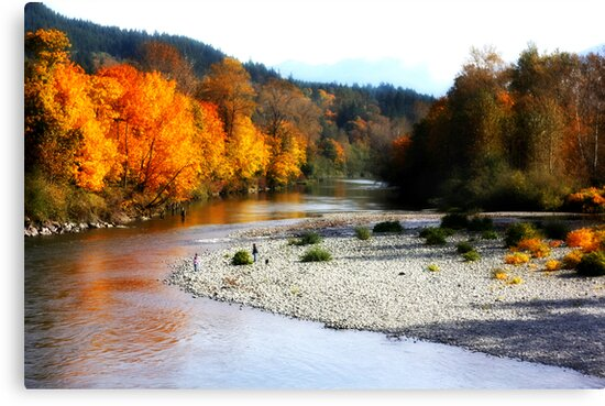 Fall color on the river by SylviaCook