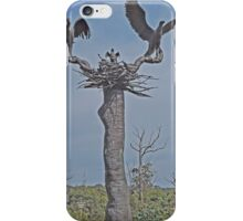 Eagle Flying Lesson iPhone Case/Skin