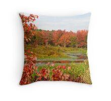 Fall Foliage, Gardner MA Throw Pillow