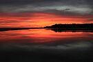 Lake Tyers Sunset by Travis Easton