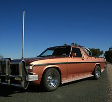 WB Holden Kingswood Ute by shotto