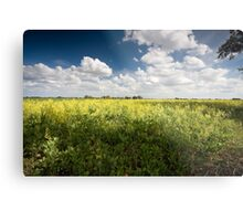 Norfolk Fields Metal Print