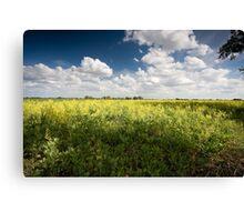Norfolk Fields Canvas Print
