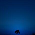 BLUE DAWN by SIMON KEEPING