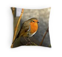 Whenever Sally & I go for a Walk, we always seem to find another little Robin. Throw Pillow