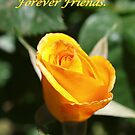 Forever friends yellow by Rosemaree
