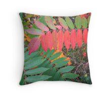 Vibrant Autumnal Colours Throw Pillow