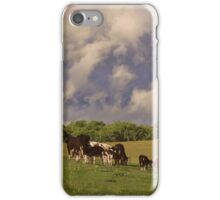 'Til the cows come home iPhone Case/Skin
