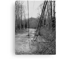 Old Westminster Rd Hubardston MA: Ice Storm Series Monochrome Canvas Print