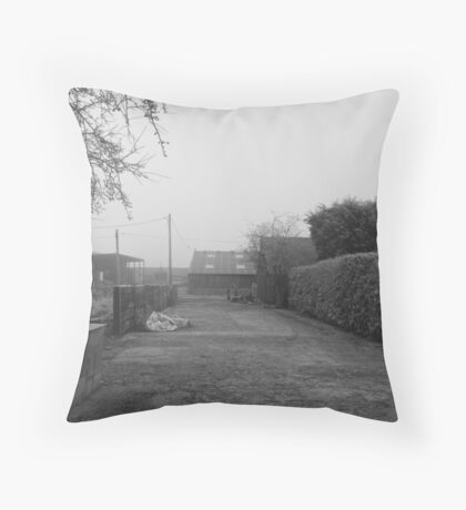 Our back yard Throw Pillow