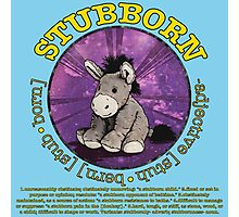 Stubborn Donkey Plush (light blue) Photographic Print