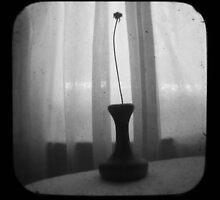 Vase Silhouette B&W TTV by Judi FitzPatrick