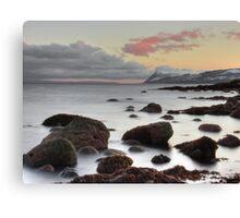 Icy Calm Canvas Print
