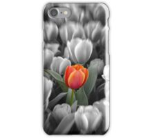 Stand alone iPhone Case/Skin