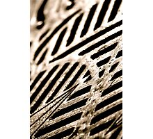 Oh Grate Photographic Print