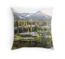Sunny Lake Throw Pillow
