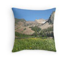 Lake Blanch Throw Pillow
