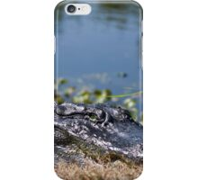 On The River Bank iPhone Case/Skin