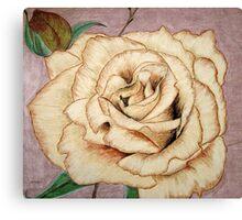 Brandy Rose Canvas Print