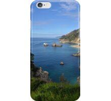 The Big Sur iPhone Case/Skin