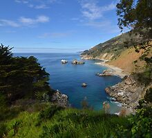 The Big Sur by Pete Johnston