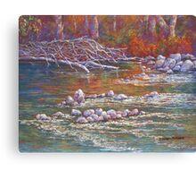 'Goulburn Riverbank, Seymour' Canvas Print