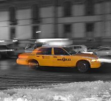 Taxi by Josie LoVallo