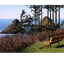 Bench With an Ocean Side View Photographic Print