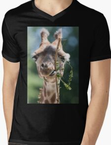 giraffe at the zoo Mens V-Neck T-Shirt