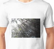 Sunrays in a forest Unisex T-Shirt