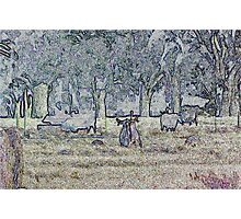 Fighting Roos Photographic Print