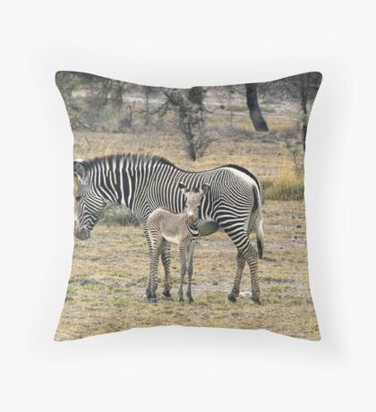 Grevy's Zebra & Foal, Central Kenya,  Africa Throw Pillow