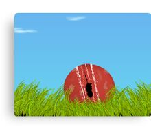 Battered, bruised & left alone Canvas Print