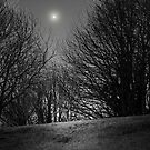 THE MOON AND THE TREES by leonie7